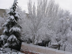Snow in Madrid
