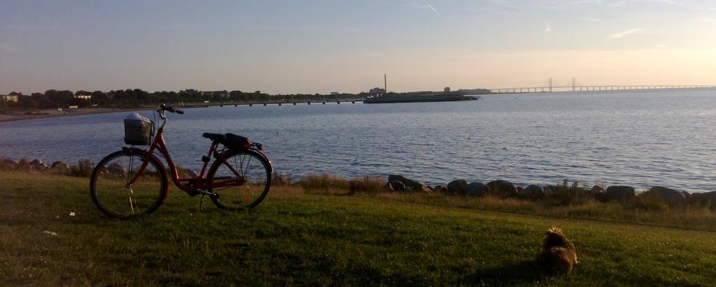 Malmö seaside view